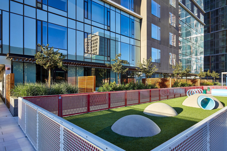 Dog Run | ZO Oakland Apartments